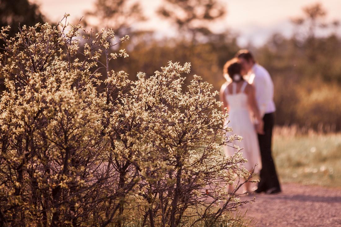 Wedding Photographer Castle Rock